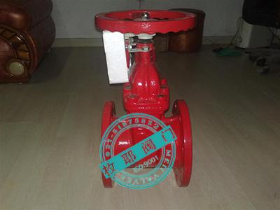 消防信号闸阀xz45x检测报告图片